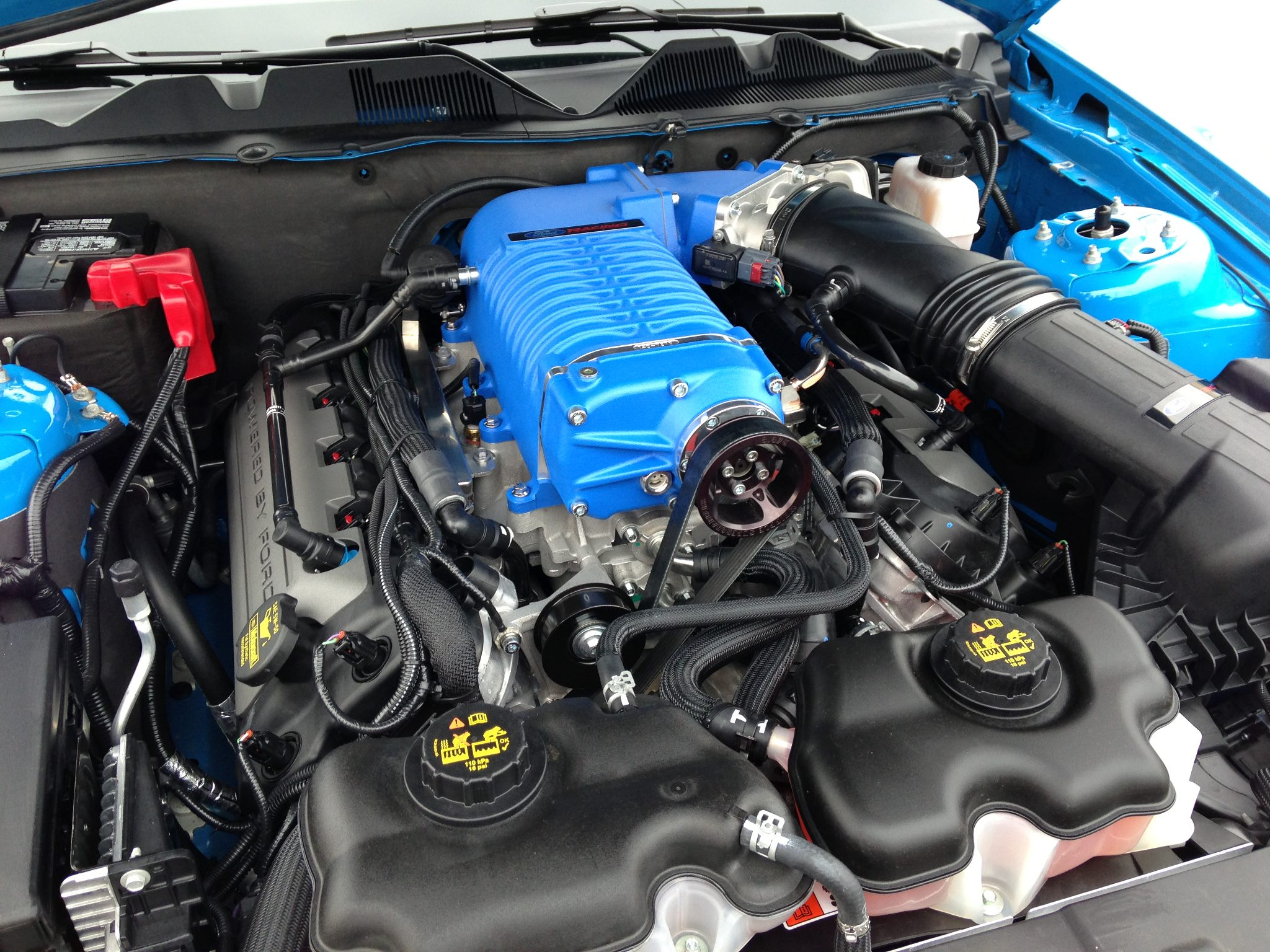blue whipple supercharger